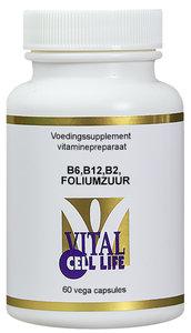Vitamine B2, B6, B12, Foliumzuur