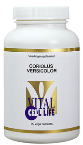 Coriolus versicolor